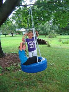 Tireswing TIRE swings we have a Blue tire swing - $78