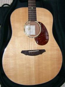 Acoustic Guitar Breedlove AD20/SM w/case - $500